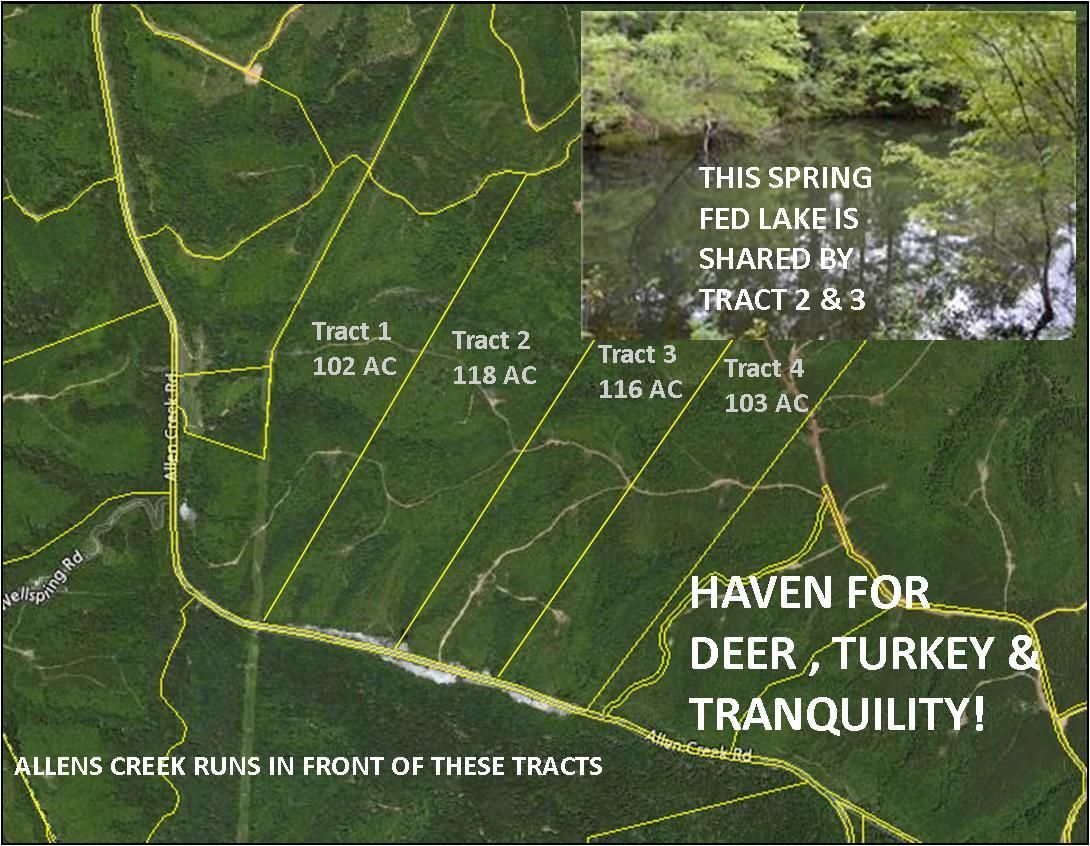 Hohenwald Tennessee Map.Large Acreage Tracts In Beautiful Middle Tennessee Allens Creek