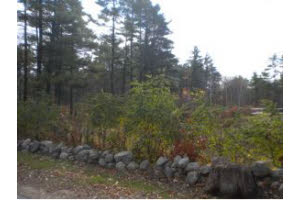 Deerfield Home, NH Real Estate Listing