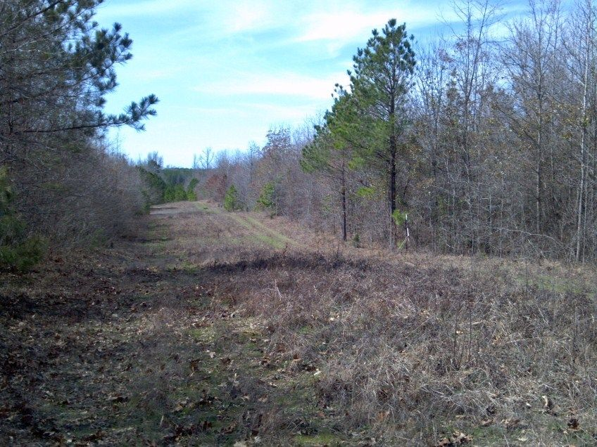 Columbia County, Arkansas Land for Sale - Section 36-15-20