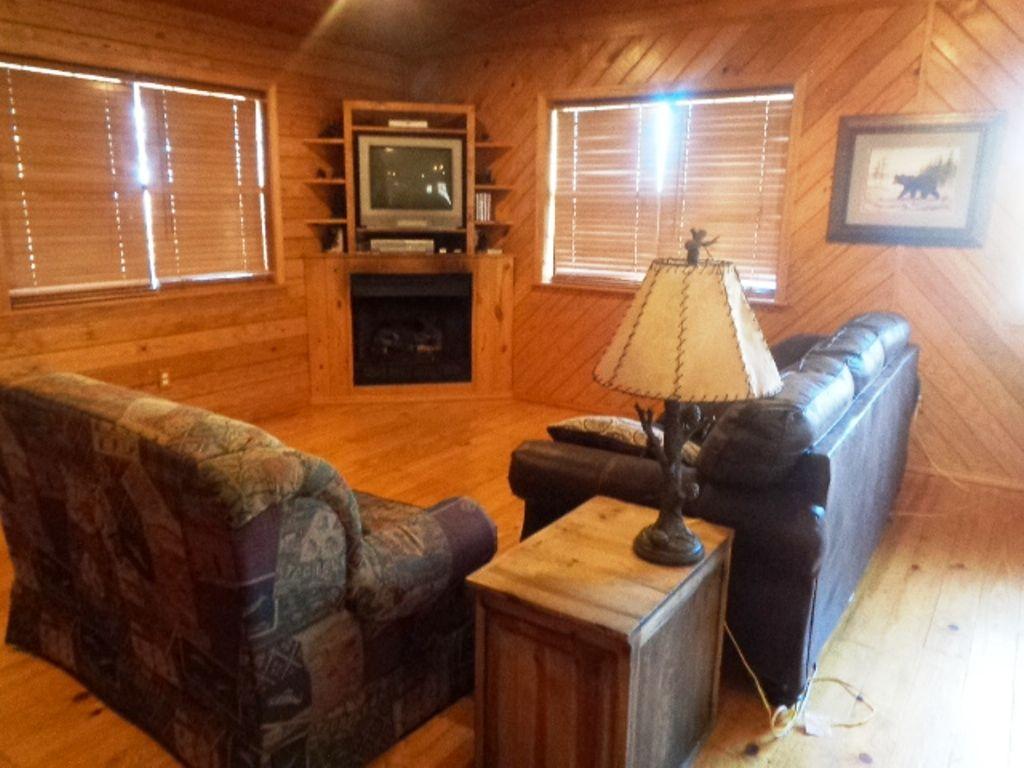Cabin 1 Livingroom View 1